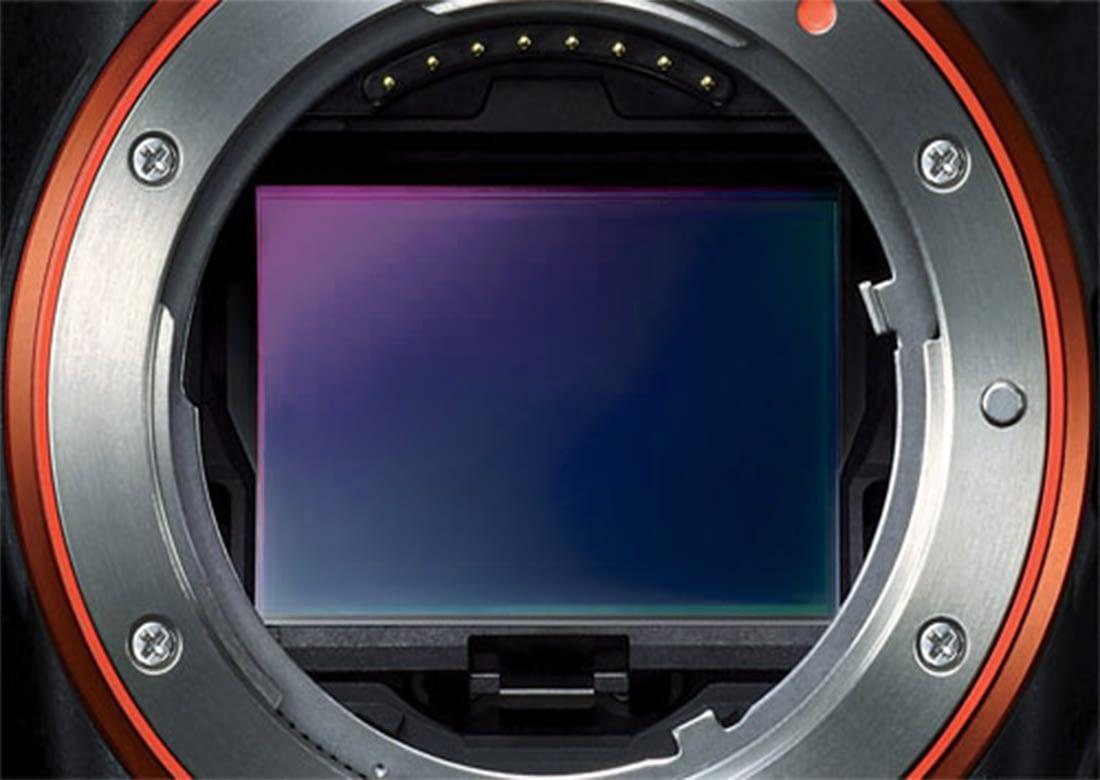 DSLR Sensor Camera For Beginners